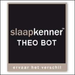 Theo-Bot